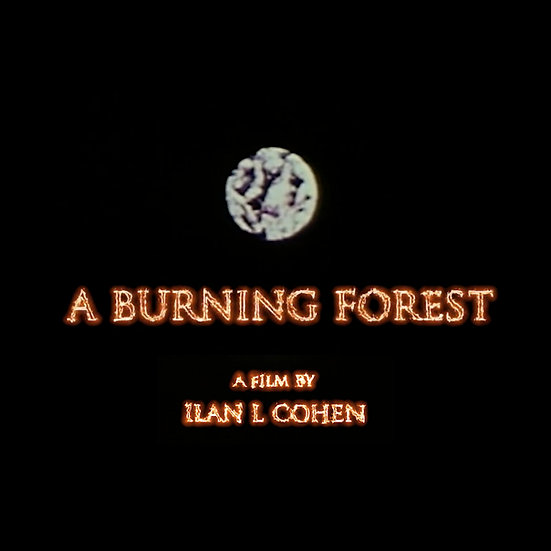 A Burning Forest