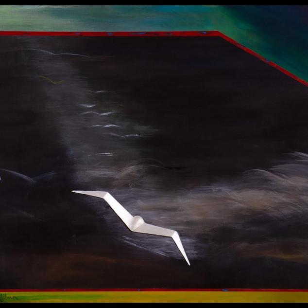 The Seabird Of Life Illuminates The Darkness