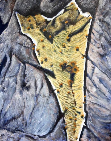 The Burren 4