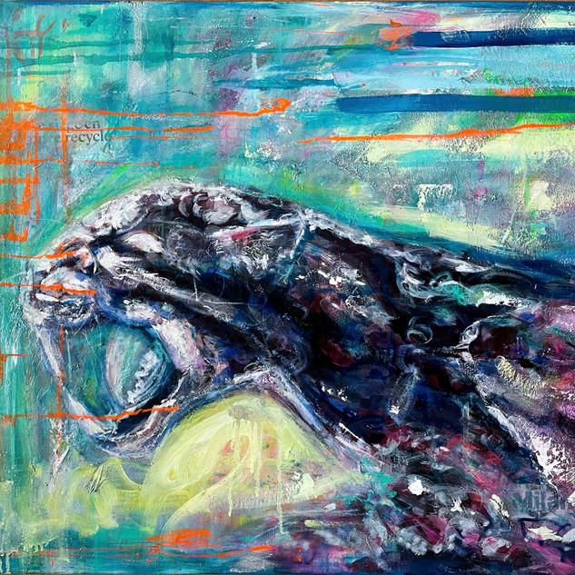 Roar (earth conscious)