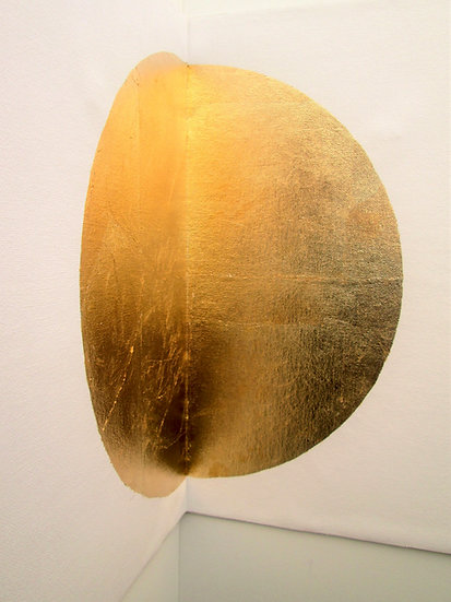 Gaia, Disco Solare