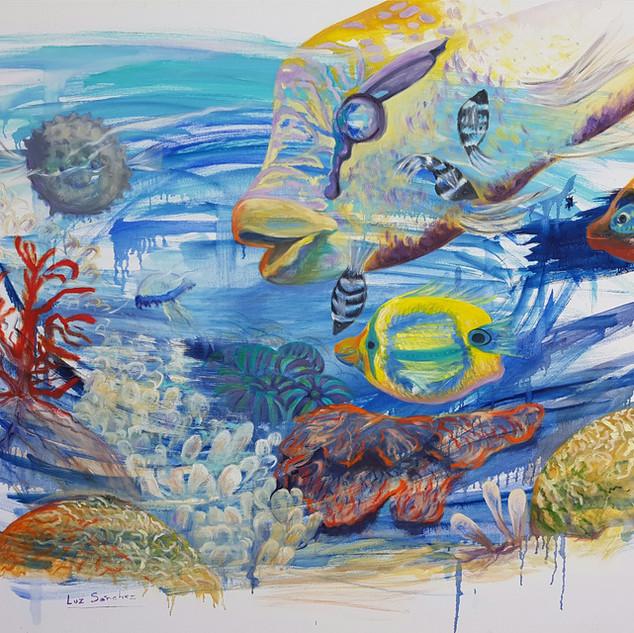 Destellos de mar
