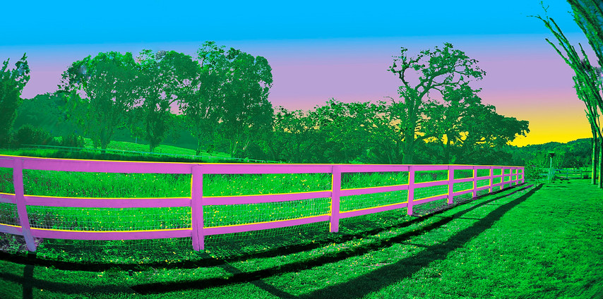 Pink Fence