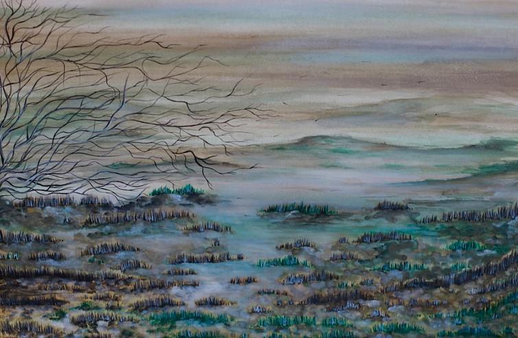 Il freddo della nebbia