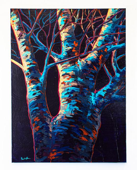 tree-branches-1.jpg