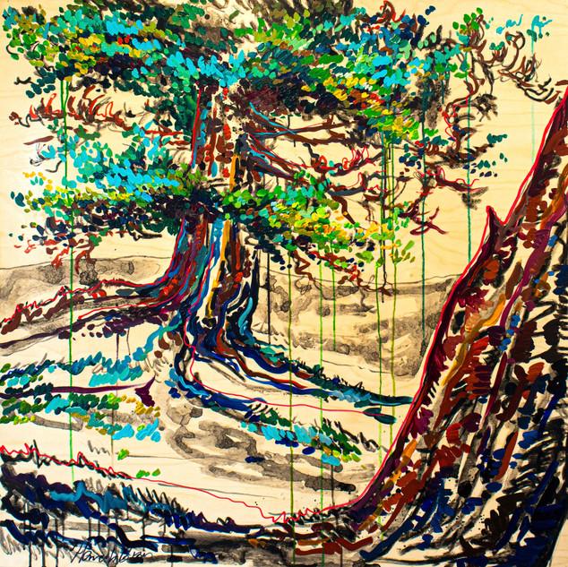 Old Tree #2