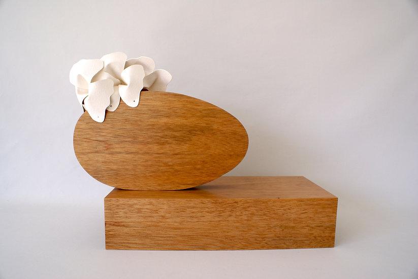 Magnolia Addormentata