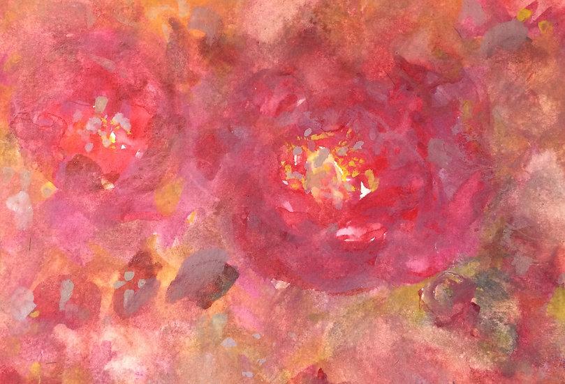 Rose De Paradise III