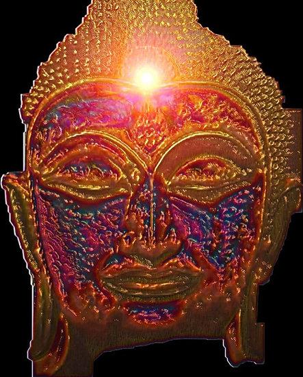 Radiant Buddha