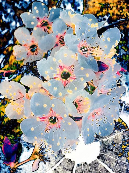 spring-lessons.jpg