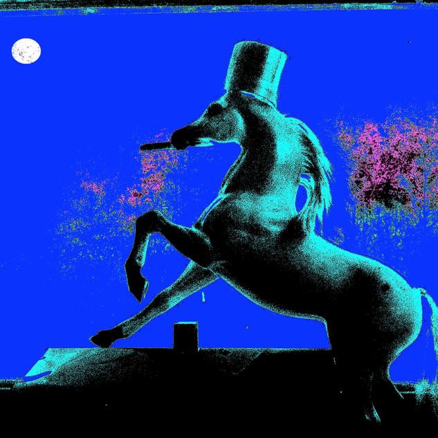 Big Horse Insania