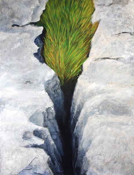 The Burren 1