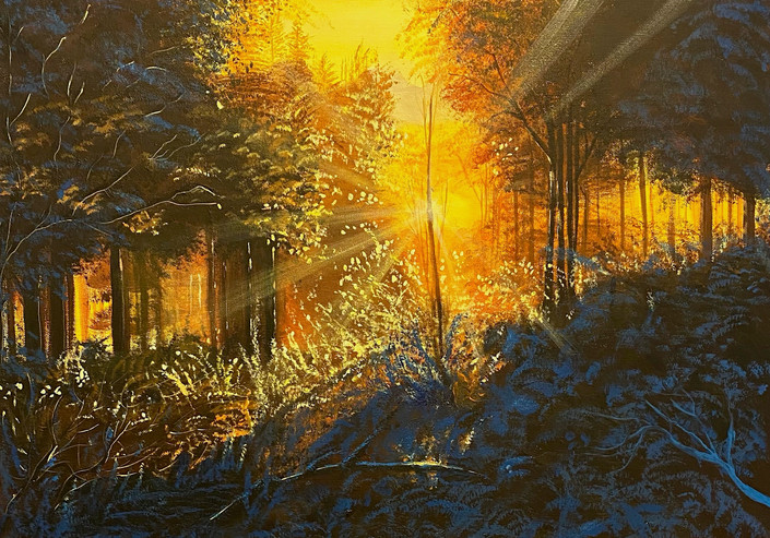 Sunset and silence in the forest!