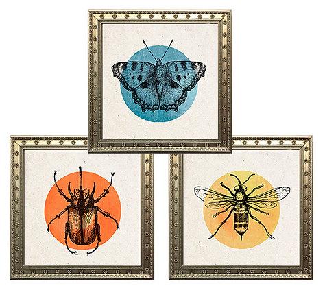 Insectos color (6 diseños disponibles) / Desde 15.000 c/u