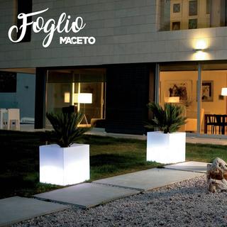 Maceto_Foglio.png