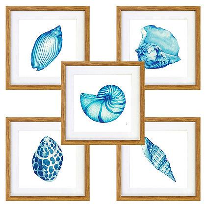 Motivos mar (5 diseños disponibles) / Desde 20.000 c/u
