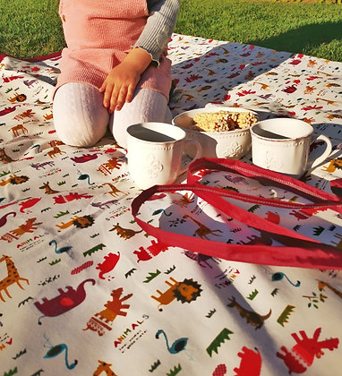 Manta picnic Safari