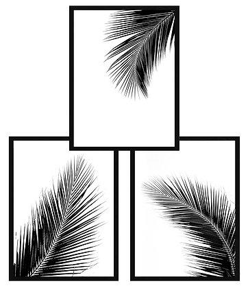 Hojas tropicales blanco y negro (3 diseños disponibles) / Desde 23.000 c/u