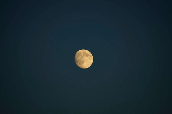 Avistamiento Lunar