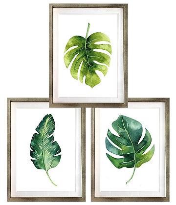 Hojas tropicales (3 diseños disponibles) / Desde 20.000 c/u