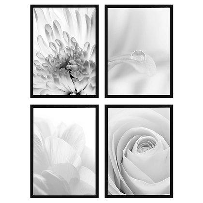 Flores Blanco y Negro / Desde 20.000 c/u