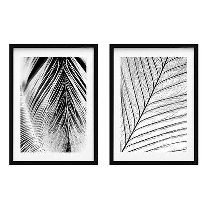 Feathers / Desde 20.000 c/u