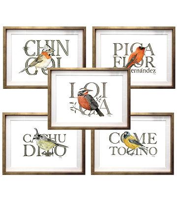 Aves chilenas (5 diseños disponibles) / Desde 40.000 c/u
