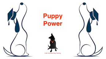 Puppy Power.png