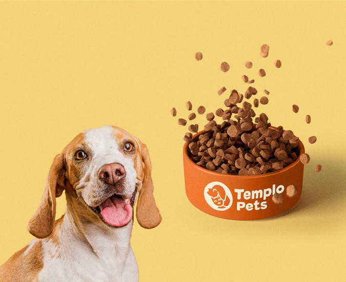 Apresentação-Templo-Pets-OK_04.jpg