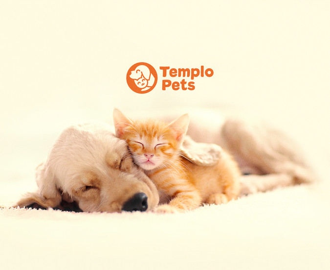 Apresentação-Templo-Pets-OK_01.jpg