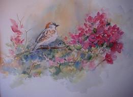 "Pretty in Pink, 11"" x 13"", Watercolour"