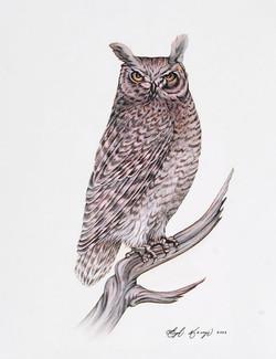 1Hugh McKenzie, 8 laser prints, Untitled