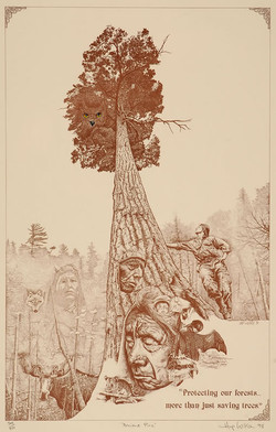 Hap Wilson, Ancient Pine