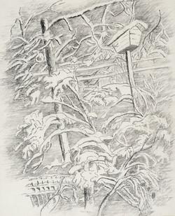 Nora E. Craven, Untitled (Bird Feeder in Winter)