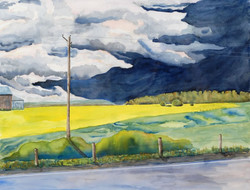 Walter Pape, Storm Rising