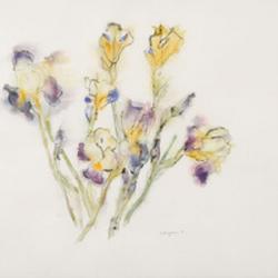 Kathrine Burgman, Iris