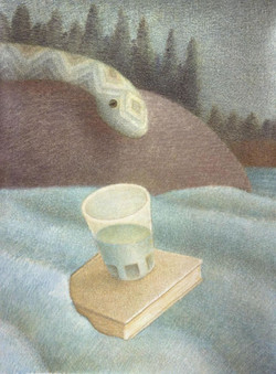 Doug Donley, Snake and Waterglass 1