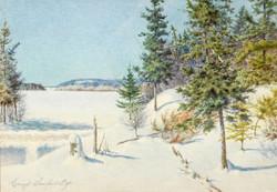 Ernest Sawford-Dye, At Gonard