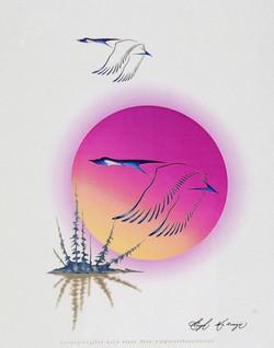 Hugh McKenzie, 8 laser prints, Untitled