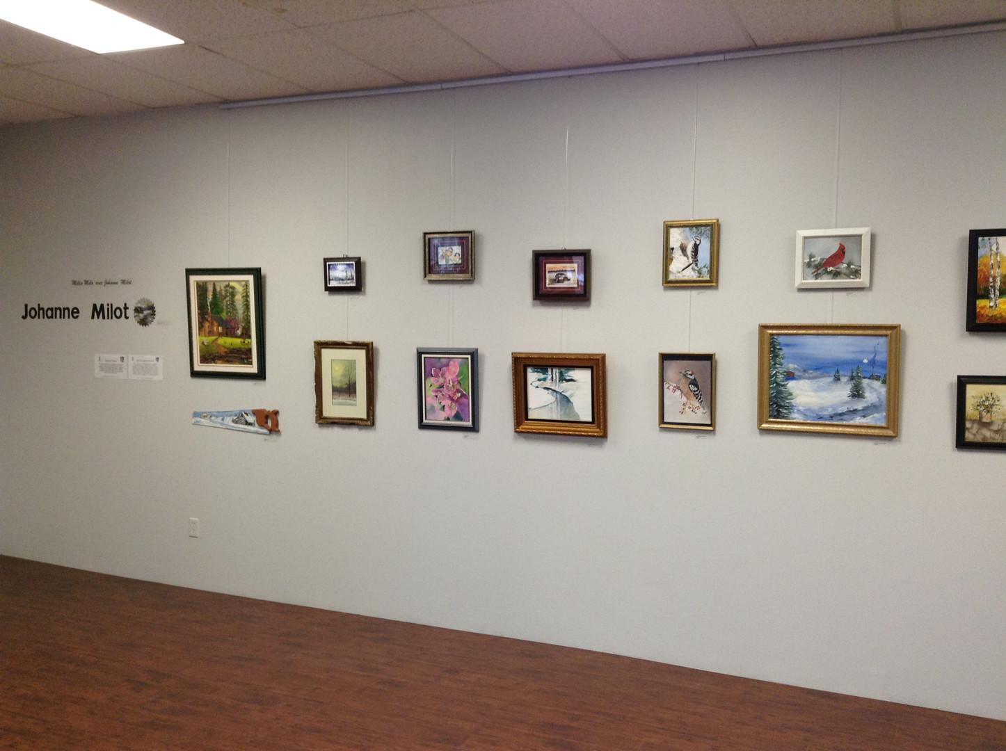 OSL Community Gallery Wall//Mur de la galerie communautaire de l'OSL