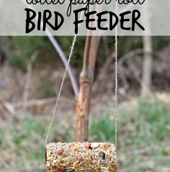 Bird Baths & Feeders - 'At Home Art 20'