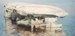 Ivan Wheale, Marooned Ice, Pond Inlet