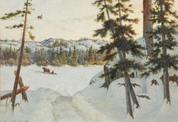 Ernest Sawford-Dye, A Northern Trail