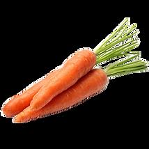 carote-kmzero-bologna-bio.png