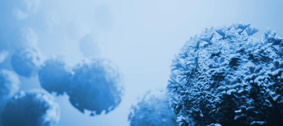 coronavirus-covid-19-attack-organism-cor