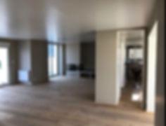 le salon et la cuisine en un seul espace fluide et fonctionnel