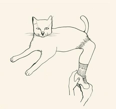 Chausser la chatte