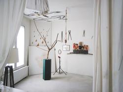 Show Room - Studio