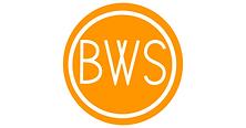 OBWS_Orange_Logo_2.png