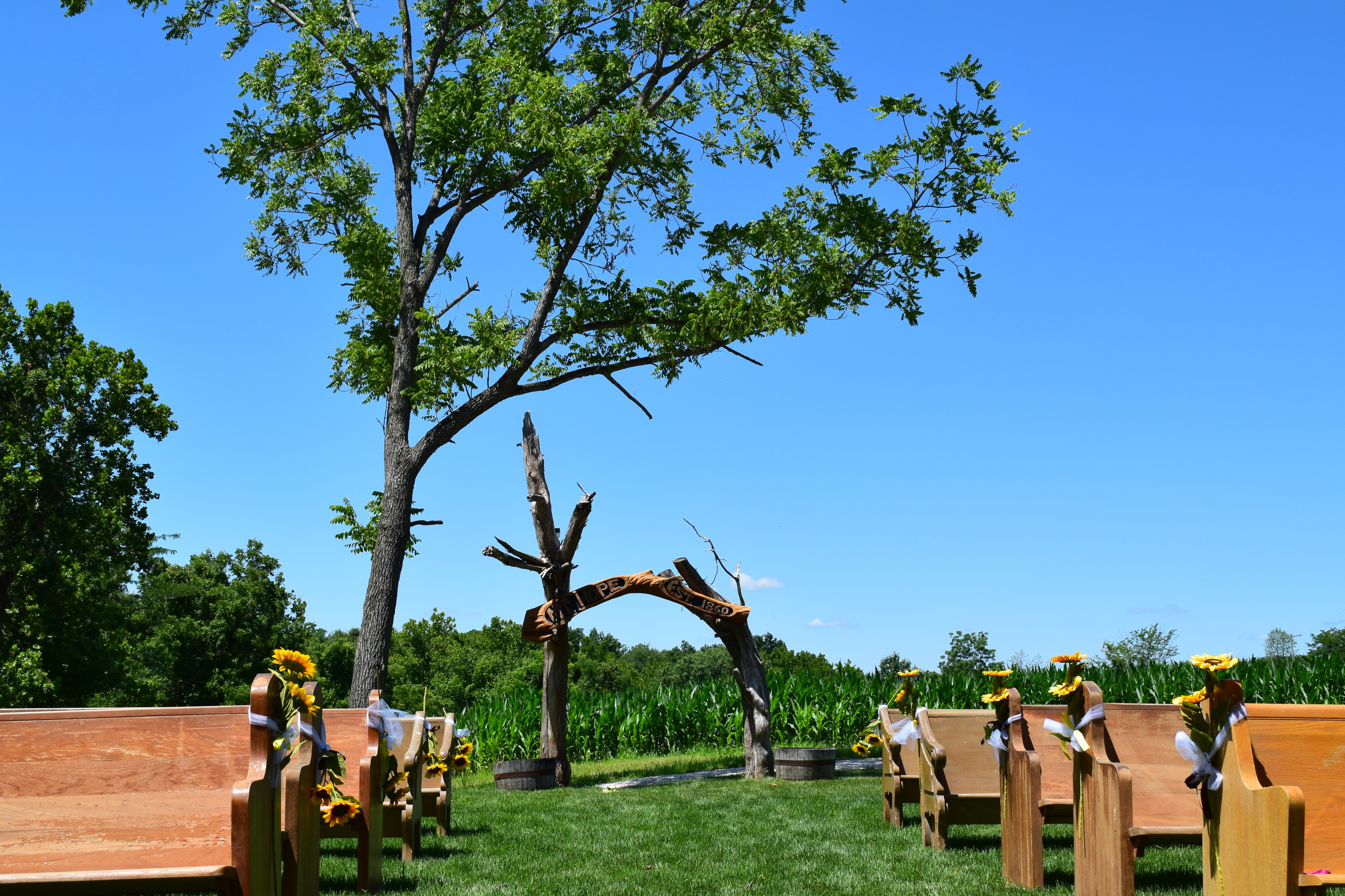 View From The ceremony stand